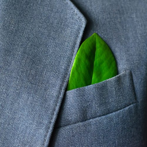 The businessman's photo in a suit with a leaf in a pocket